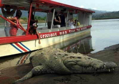 jaco beach crocodile tour